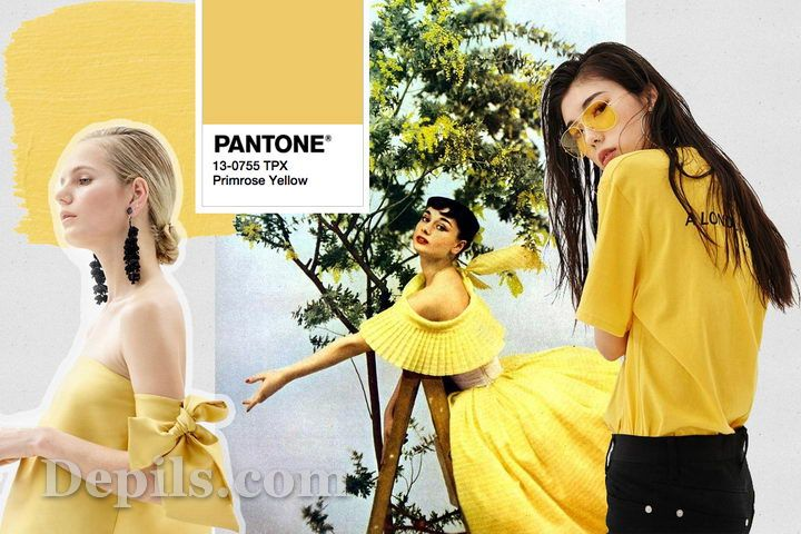 primrose yellow color